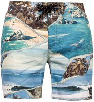 Knoxville beachshort
