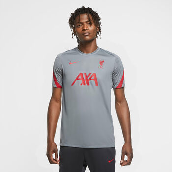 Nike Liverpool FC Strike top Grijs