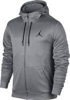 Jordan Therma 23 Alpha Training hoodie
