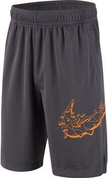 Nike Dry GFX short Jongens