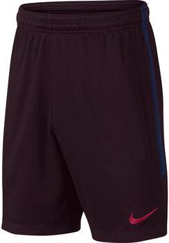 Nike FC Barcelona Dry Strike jr short Jongens Rood