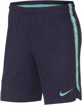 Nike Dry FC Barcelona Squad short Heren Paars