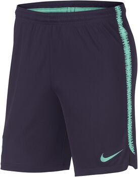 Nike Dry FC Barcelona Squad short Heren Paars