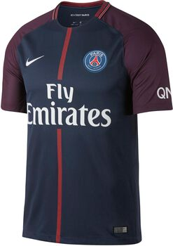 Nike Breathe Paris Saint-Germain Stadium shirt Heren Blauw